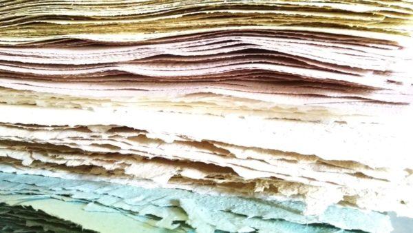 carta biologica